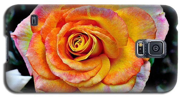 Galaxy S5 Case featuring the mixed media The Imperfect Rose by Glenn McCarthy