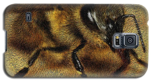 The Killer Bee Galaxy S5 Case by ISAW Gallery