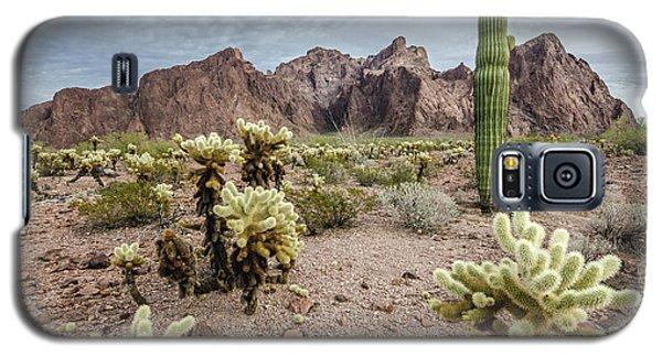 The King Of Arizona National Wildlife Refuge Galaxy S5 Case