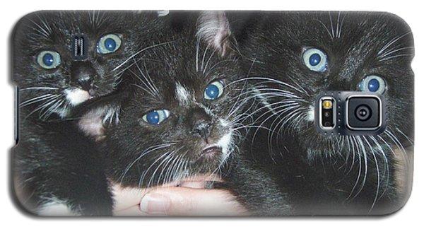 The Kittidiots Galaxy S5 Case