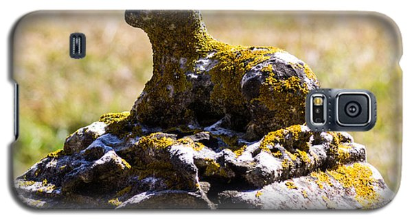 The Lamb Galaxy S5 Case by Dick Botkin