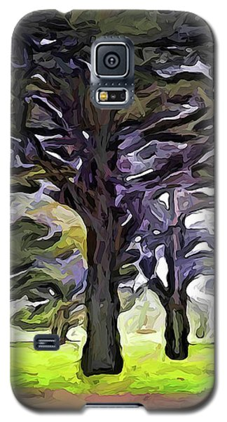 The Landscape With The Trees In A Row Galaxy S5 Case
