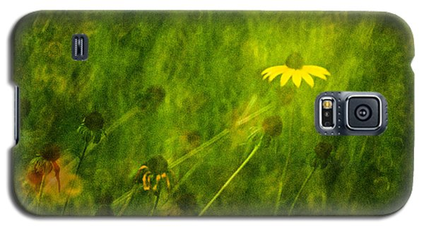 The Last Black-eyed Susan Galaxy S5 Case by  Onyonet  Photo Studios