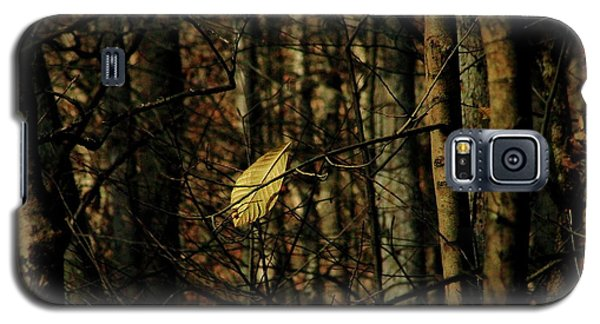 Galaxy S5 Case featuring the photograph The Last Leaf by Bruce Patrick Smith