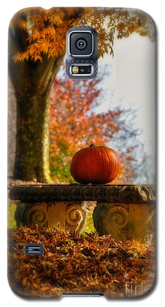 The Last Pumpkin Galaxy S5 Case