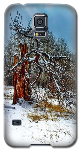 Galaxy S5 Case featuring the photograph The Last Stand by Shane Bechler