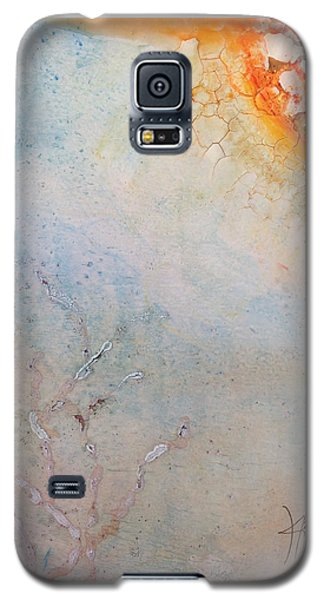 The Last Time Galaxy S5 Case