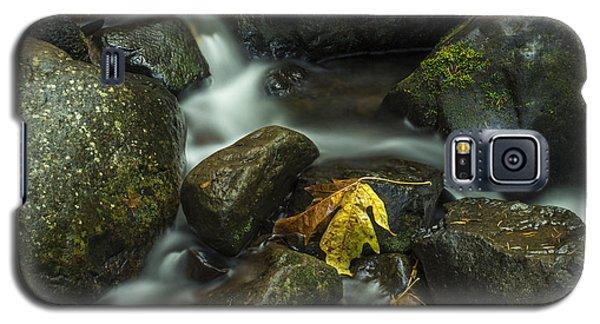 The Leaf Galaxy S5 Case