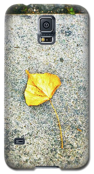 Galaxy S5 Case featuring the photograph The Leaf by Silvia Ganora