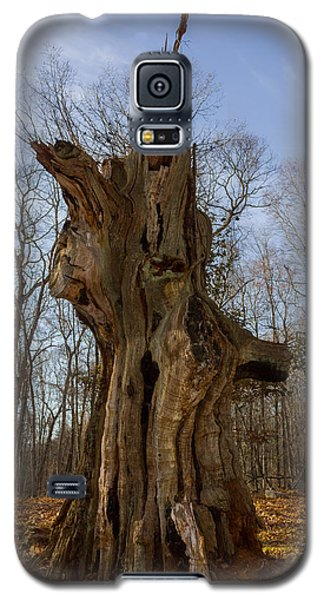The Ledyard Oak Galaxy S5 Case