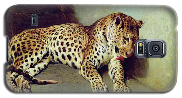 The Leopard Galaxy S5 Case by John Sargent Noble