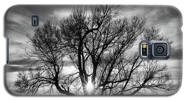 The Light Comes Through Galaxy S5 Case by Monte Stevens