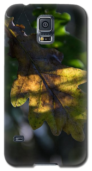 Galaxy S5 Case featuring the photograph The Light Fell Softly by Odd Jeppesen