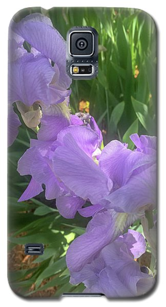 The Light Of Day Galaxy S5 Case