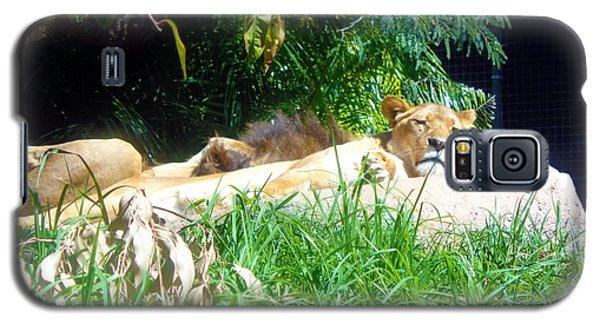 The Lion Awakes Galaxy S5 Case