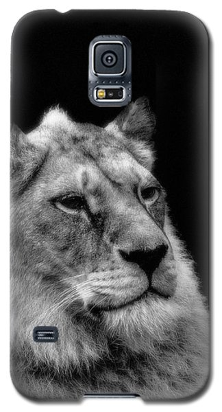 The Lioness Sitting Proud Galaxy S5 Case