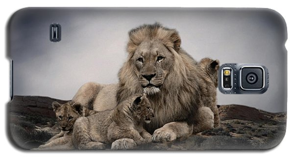 Galaxy S5 Case featuring the photograph The Lions by Christine Sponchia