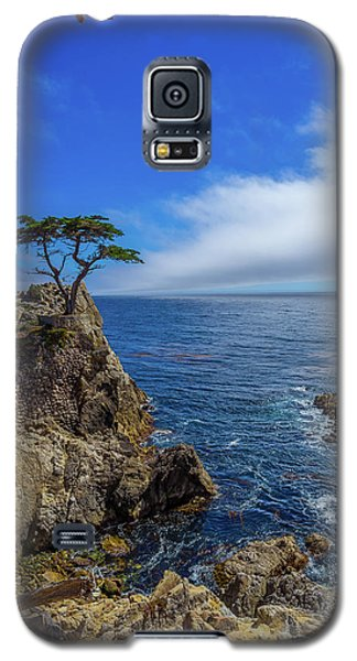 Galaxy S5 Case featuring the photograph The Lone Cypress 17 Mile Drive by Scott McGuire