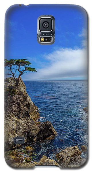 The Lone Cypress 17 Mile Drive Galaxy S5 Case