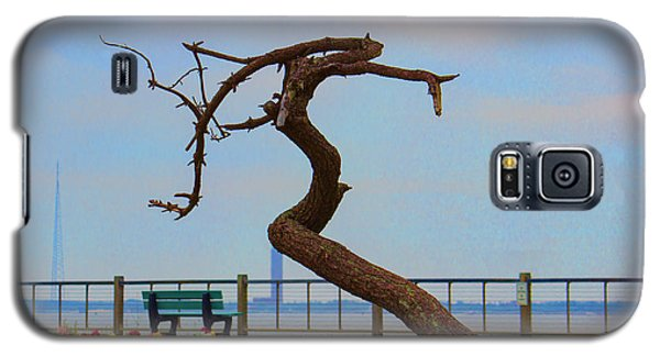 The Lone Tree Galaxy S5 Case