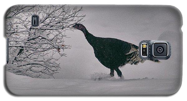 The Lone Turkey Galaxy S5 Case