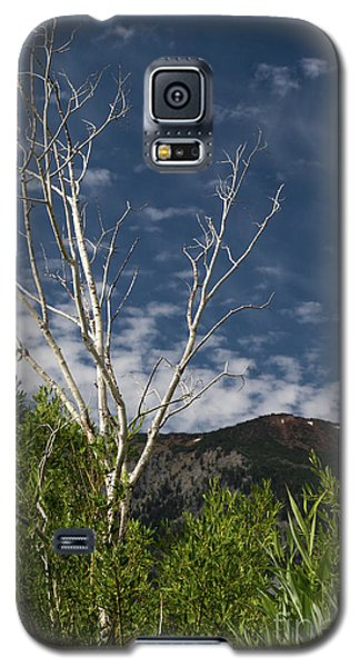 The Lonely Aspen  Galaxy S5 Case