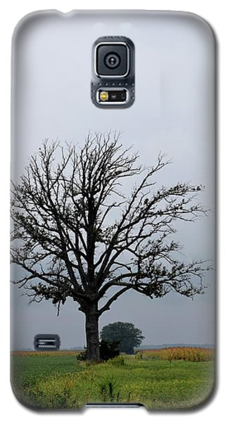 The Lonely Tree Galaxy S5 Case