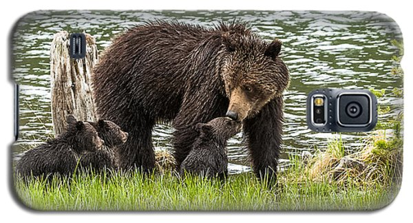 The Love Of Mama Bear Galaxy S5 Case by Yeates Photography