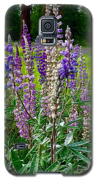 The Lupine Crowd Galaxy S5 Case