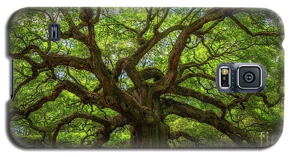 The Magical Angel Oak Tree Panorama  Galaxy S5 Case