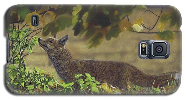 The Fantastic Mr Fox Galaxy S5 Case