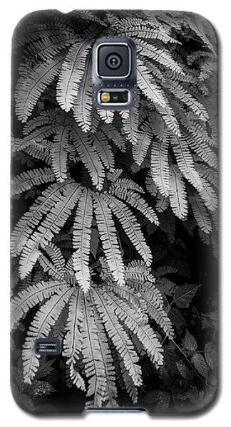 The Maiden's Hair Galaxy S5 Case