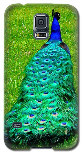 The Majestic Tail Galaxy S5 Case by Angela Annas