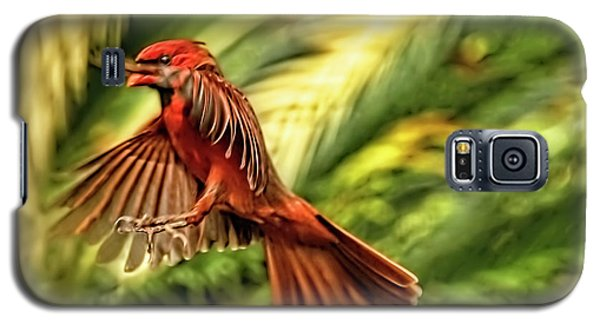 The Male Cardinal Approaches Galaxy S5 Case