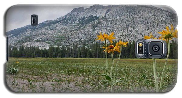 Galaxy S5 Case featuring the photograph The Meadow by Paul Foutz