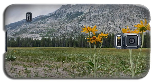 The Meadow Galaxy S5 Case by Paul Foutz