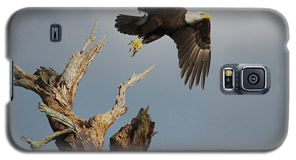 Galaxy S5 Case featuring the photograph the Mighty Ozzie. by Evelyn Garcia