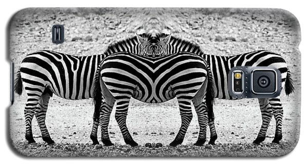 Galaxy S5 Case featuring the photograph The Mirrord Zebra by Arik Baltinester