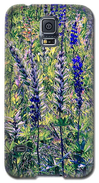Galaxy S5 Case featuring the photograph The Mix by Elfriede Fulda