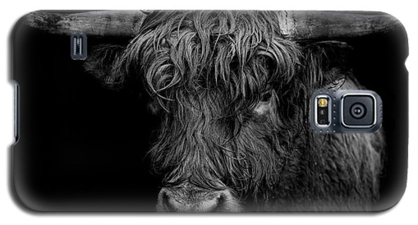 Bull Galaxy S5 Case - The Monarch by Paul Neville
