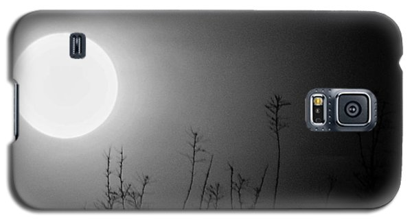 The Moon And The Stars Galaxy S5 Case by John Glass