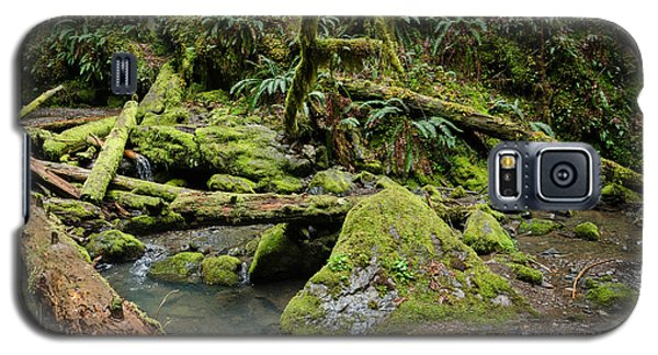 The Mossy River Galaxy S5 Case