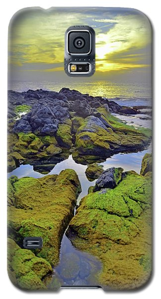 Galaxy S5 Case featuring the photograph The Mossy Rocks At Sunset by Tara Turner