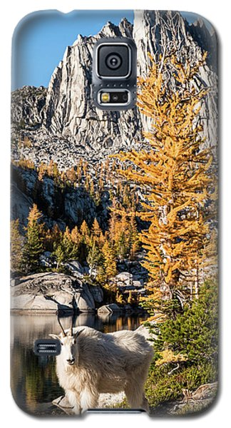 The Mountain Goat In The Enchantments Galaxy S5 Case