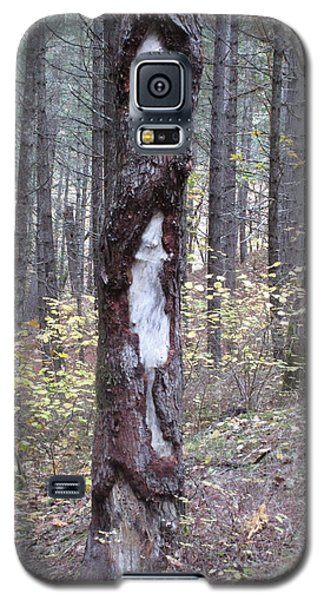Galaxy S5 Case featuring the photograph The Mouse Ran Up The  by Marie Neder