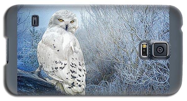 The Mystical Snowy Owl Galaxy S5 Case by Brian Tarr
