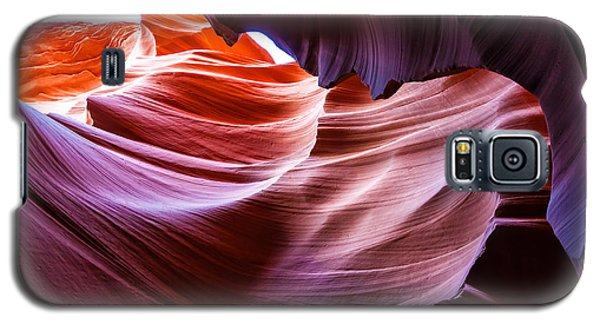 The Natural Sculpture 14 Galaxy S5 Case