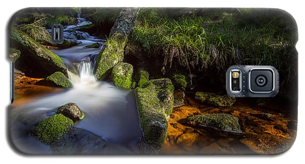 the Oder in the Harz National Park Galaxy S5 Case