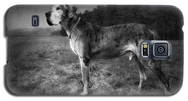 The Old Great Dane Galaxy S5 Case