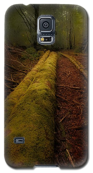 The Old Mossy Trunk Galaxy S5 Case